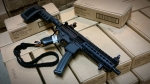 Sig Sauer MPX 9 Keymod with Brace *Expired